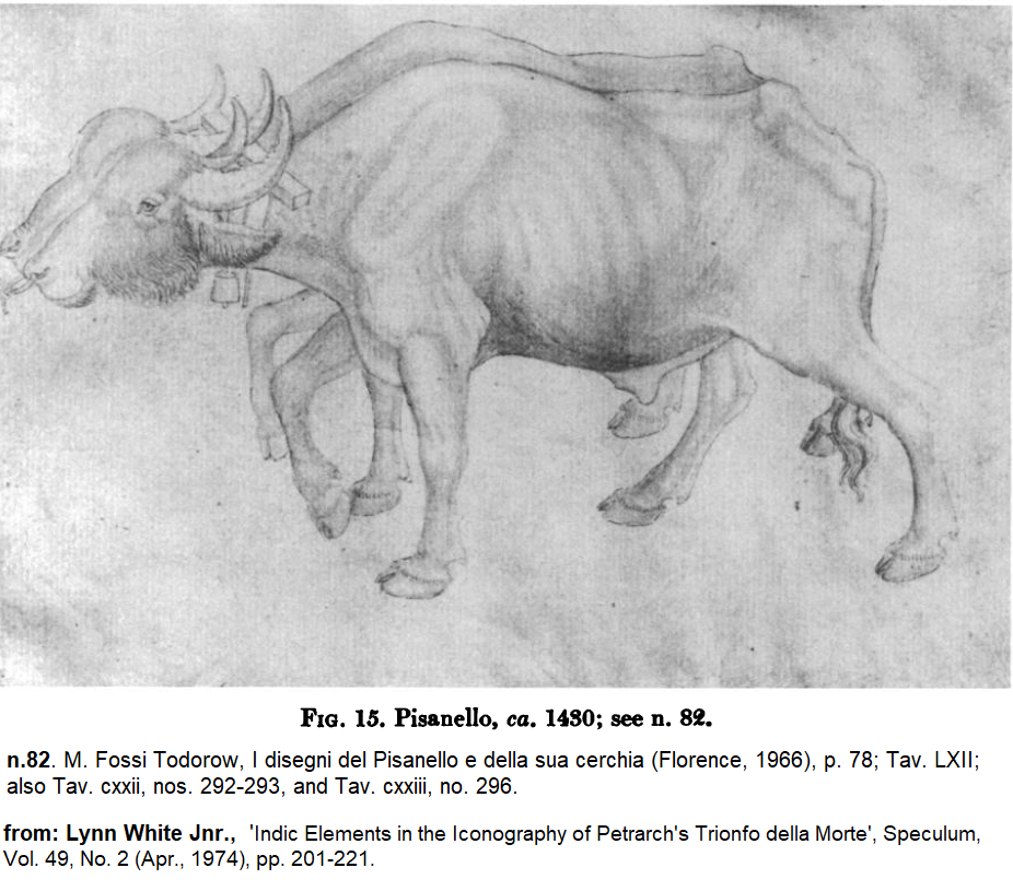 Indic buffalo Pisanello from Lynn White 'Indic Elements..'